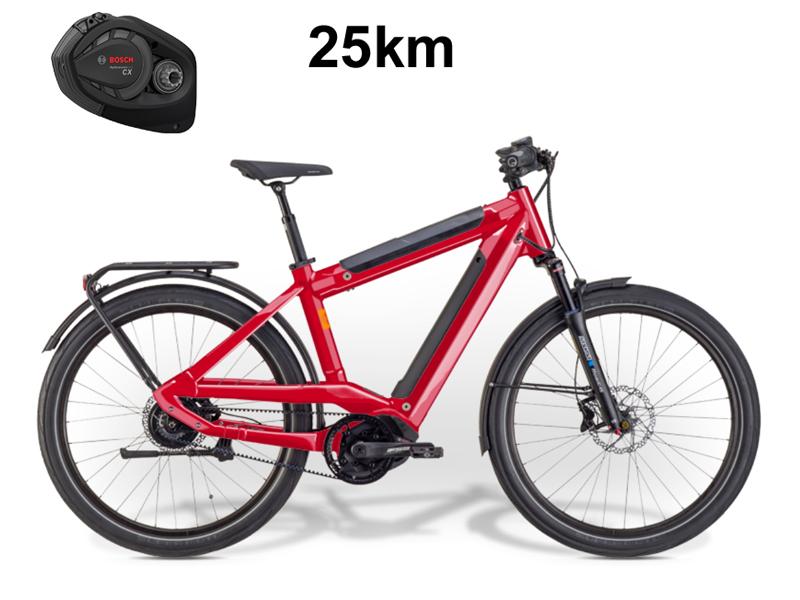 IBEX - E-Trekkingbike - eDivide Neo